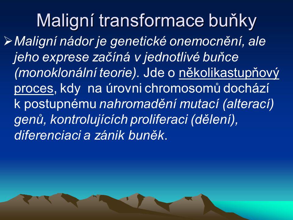 Maligní transformace buňky  Maligní nádor je genetické onemocnění, ale jeho exprese začíná v jednotlivé buňce (monoklonální teorie). Jde o několikast