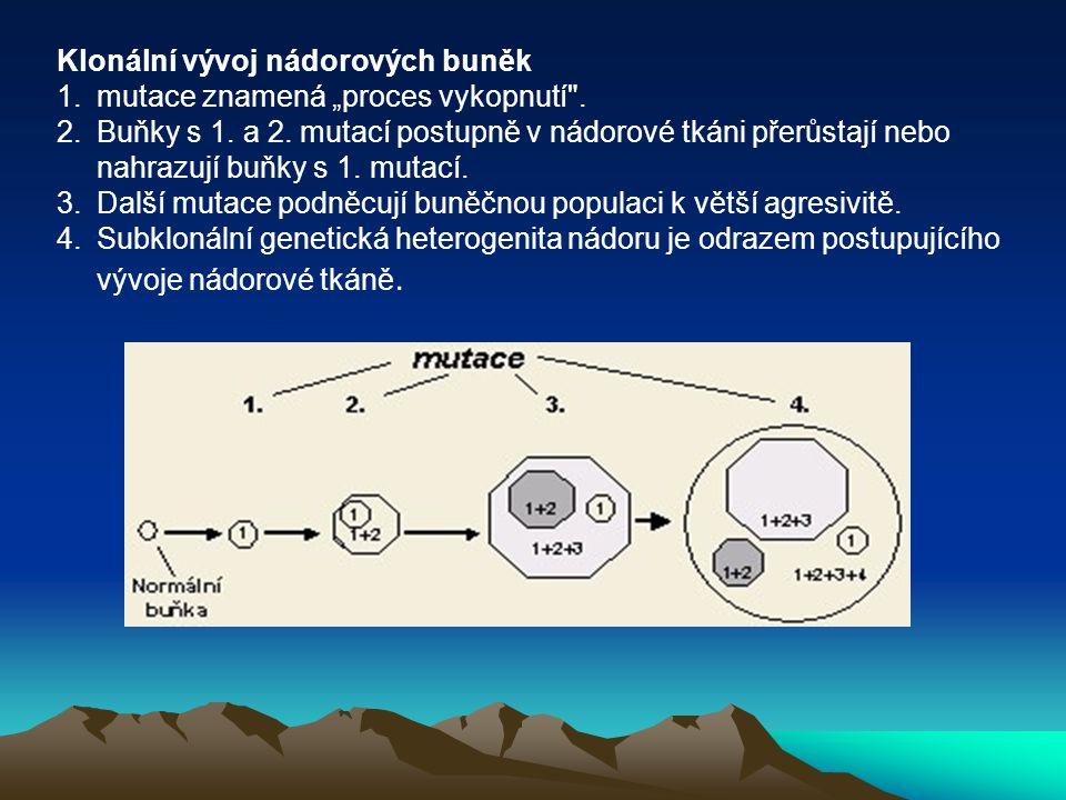 """Klonální vývoj nádorových buněk 1.mutace znamená """"proces vykopnutí"""
