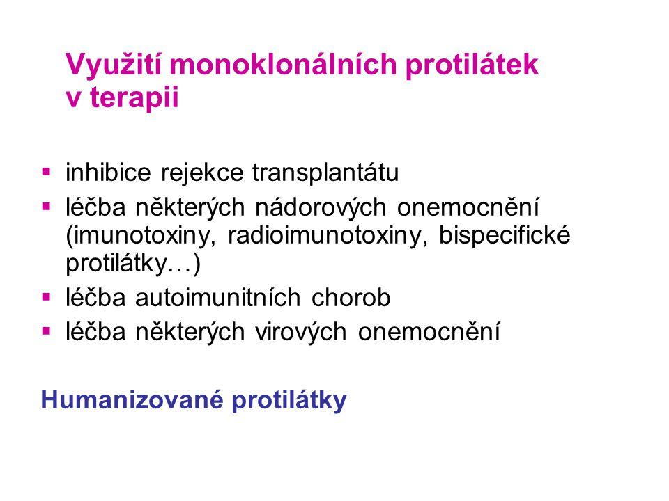 Využití monoklonálních protilátek v terapii  inhibice rejekce transplantátu  léčba některých nádorových onemocnění (imunotoxiny, radioimunotoxiny, bispecifické protilátky…)  léčba autoimunitních chorob  léčba některých virových onemocnění Humanizované protilátky