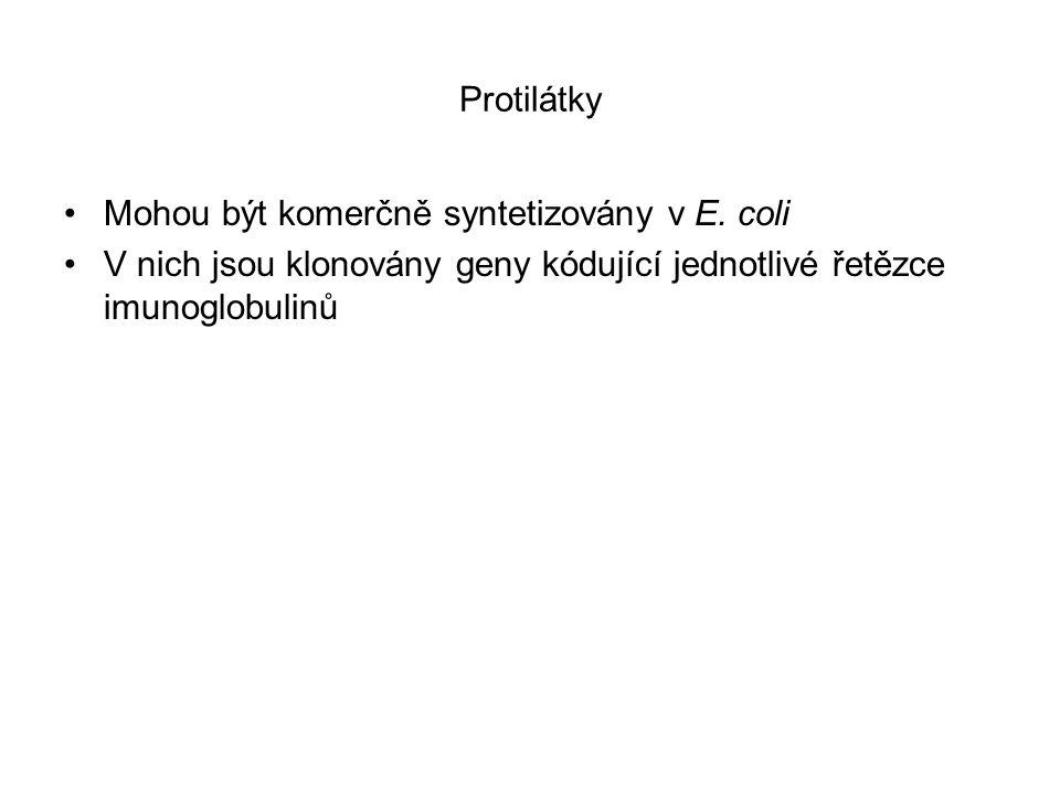 Protilátky Mohou být komerčně syntetizovány v E.
