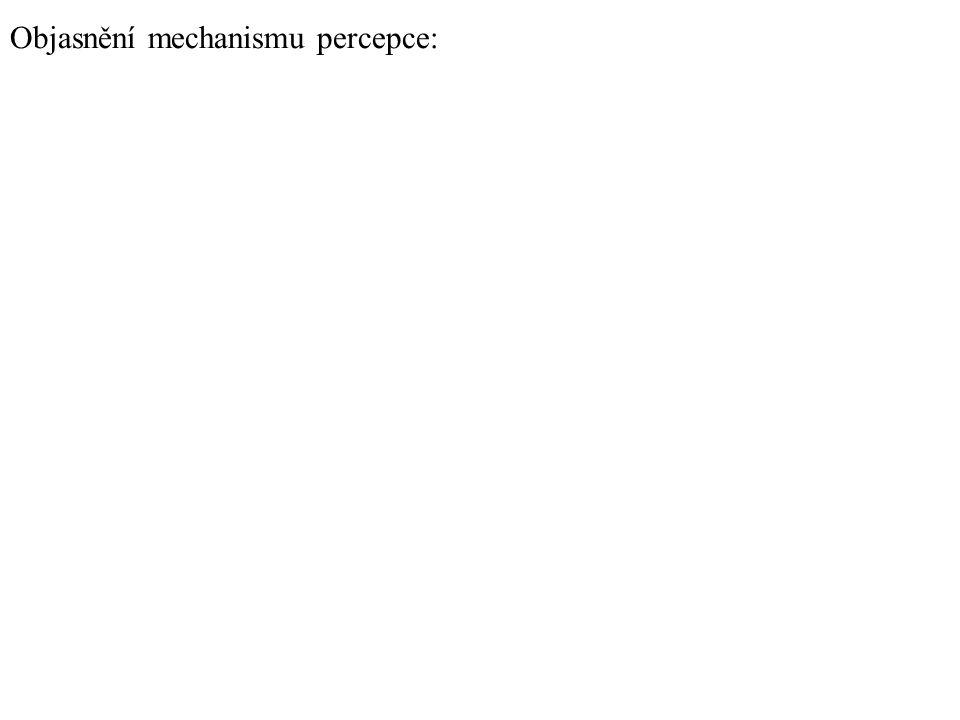 Objasnění mechanismu percepce: