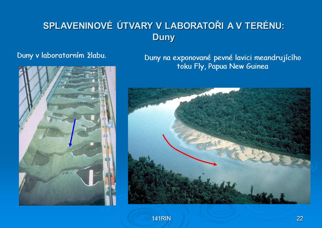 141RIN22 SPLAVENINOVÉ ÚTVARY V LABORATOŘI A V TERÉNU: Duny Duny na exponované pevné lavici meandrujícího toku Fly, Papua New Guinea Duny v laboratorním žlabu.