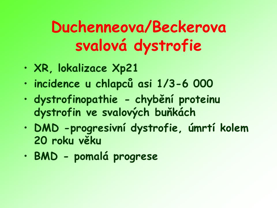 Duchenneova/Beckerova svalová dystrofie XR, lokalizace Xp21 incidence u chlapců asi 1/3-6 000 dystrofinopathie - chybění proteinu dystrofin ve svalových buňkách DMD -progresivní dystrofie, úmrtí kolem 20 roku věku BMD - pomalá progrese