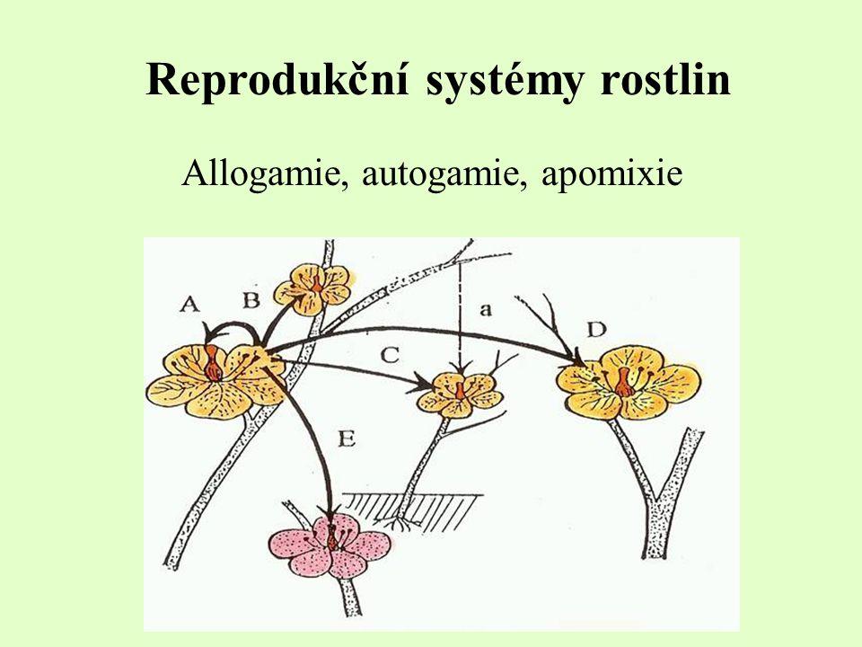 Reprodukční systémy rostlin Allogamie, autogamie, apomixie