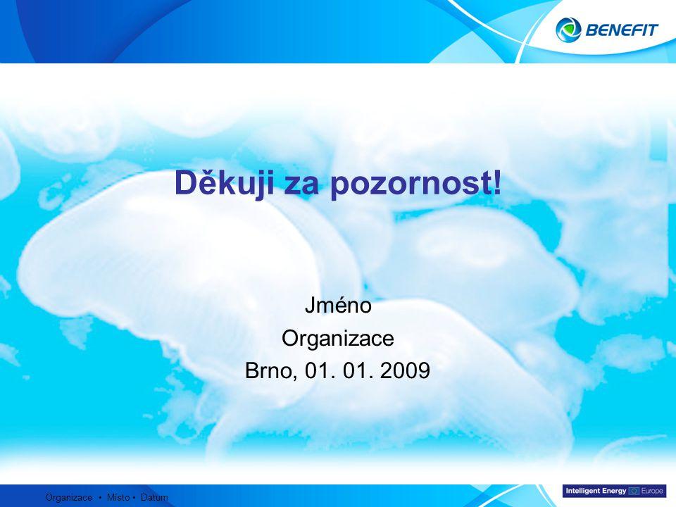 Topic Organizace Místo Datum Děkuji za pozornost! Jméno Organizace Brno, 01. 01. 2009