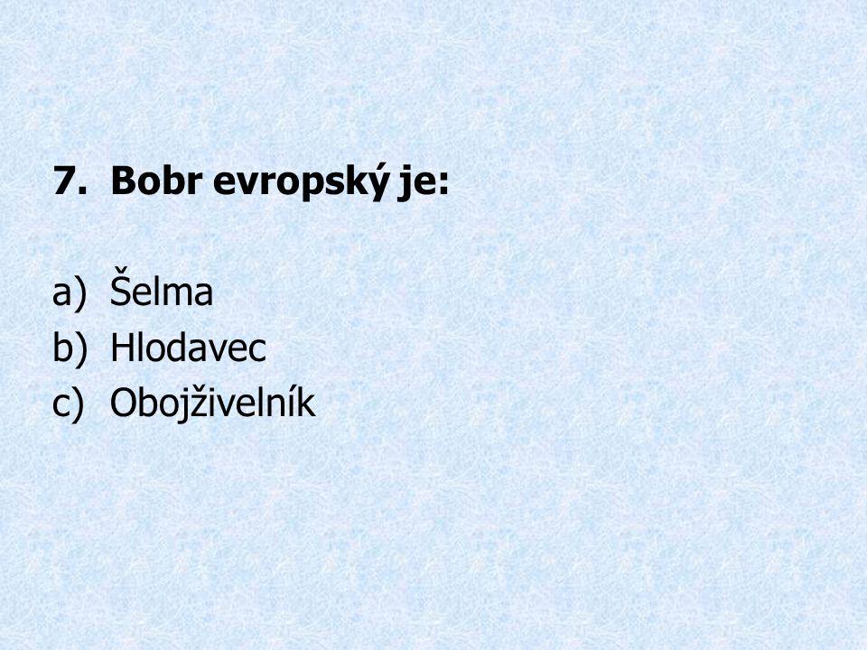 7.Bobr evropský je: a)Šelma b)Hlodavec c)Obojživelník