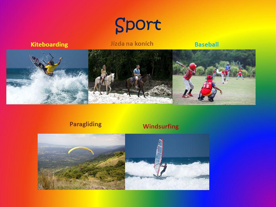 Sport Kiteboarding Windsurfing Baseball Jízda na koních Paragliding