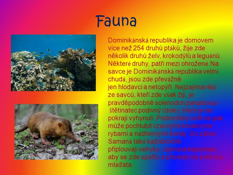 Flora T é měř třetinu rozlohy Dominik á nsk é republiky pokrývaj í lesy a pralesy, najdeme zde 74 chr á něných ú zem í a př í rodn í ch pam á tek, z toho je 14 n á rodn í ch parků (11 pozemn í ch a 3 mořsk é ) a 9 vědeckých rezervac í.