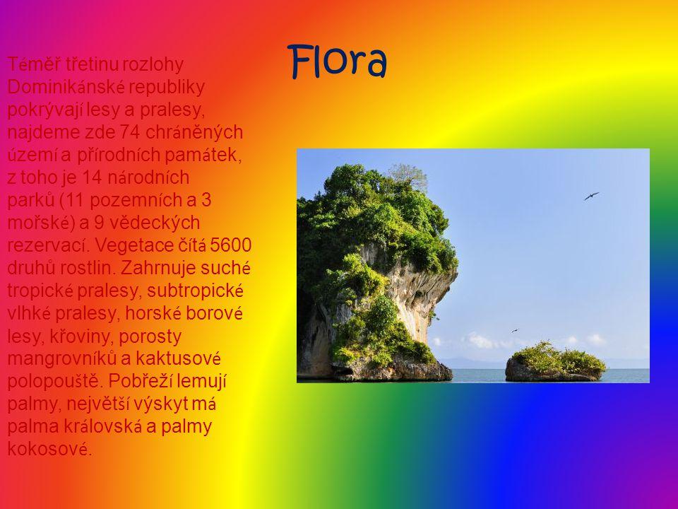 Flora T é měř třetinu rozlohy Dominik á nsk é republiky pokrývaj í lesy a pralesy, najdeme zde 74 chr á něných ú zem í a př í rodn í ch pam á tek, z t