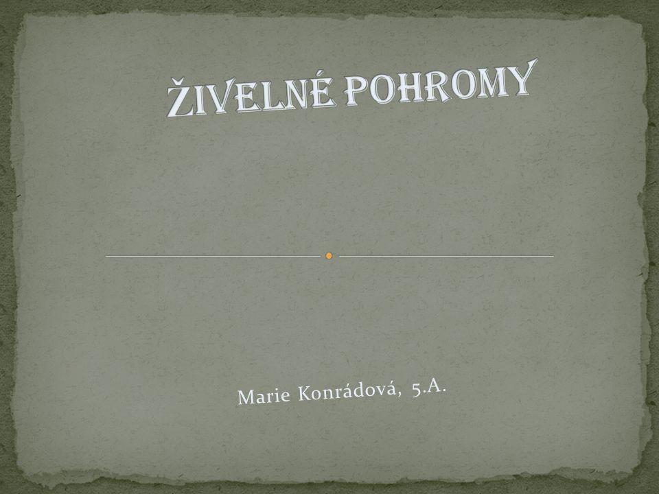 Marie Konrádová, 5.A.