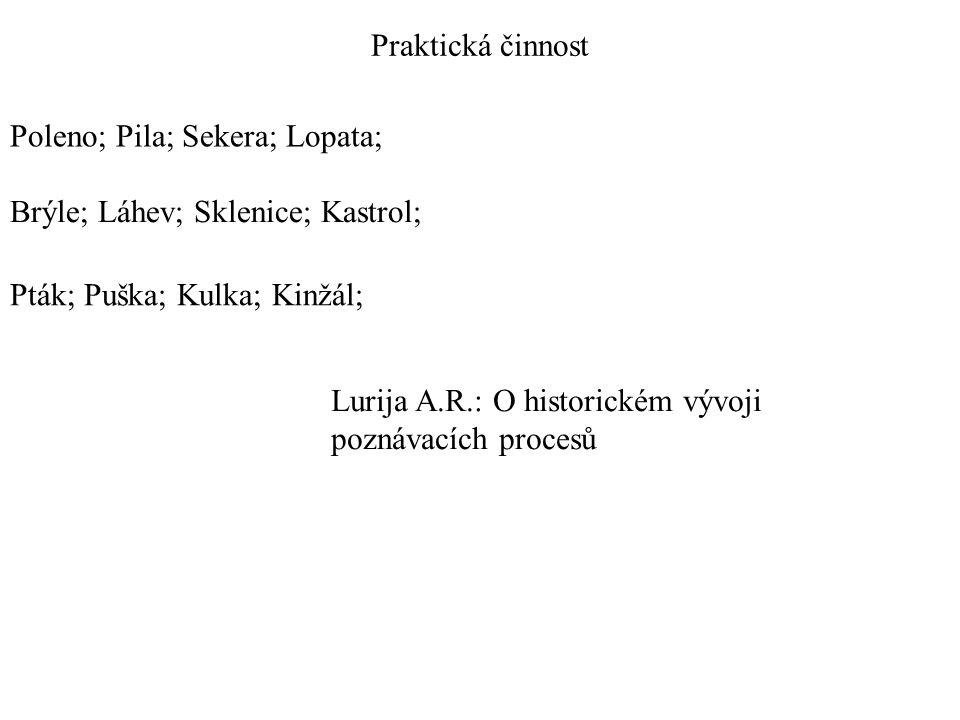 Praktická činnost Poleno; Pila; Sekera; Lopata; Brýle; Láhev; Sklenice; Kastrol; Pták; Puška; Kulka; Kinžál; Lurija A.R.: O historickém vývoji poznáva