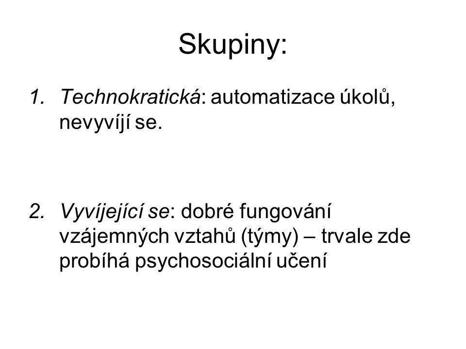 Skupiny: 1.Technokratická: automatizace úkolů, nevyvíjí se. 2.Vyvíjející se: dobré fungování vzájemných vztahů (týmy) – trvale zde probíhá psychosociá