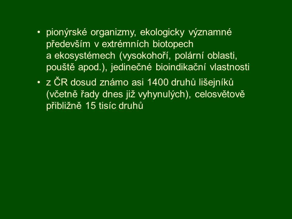 pionýrské organizmy, ekologicky významné především v extrémních biotopech a ekosystémech (vysokohoří, polární oblasti, pouště apod.), jedinečné bioind