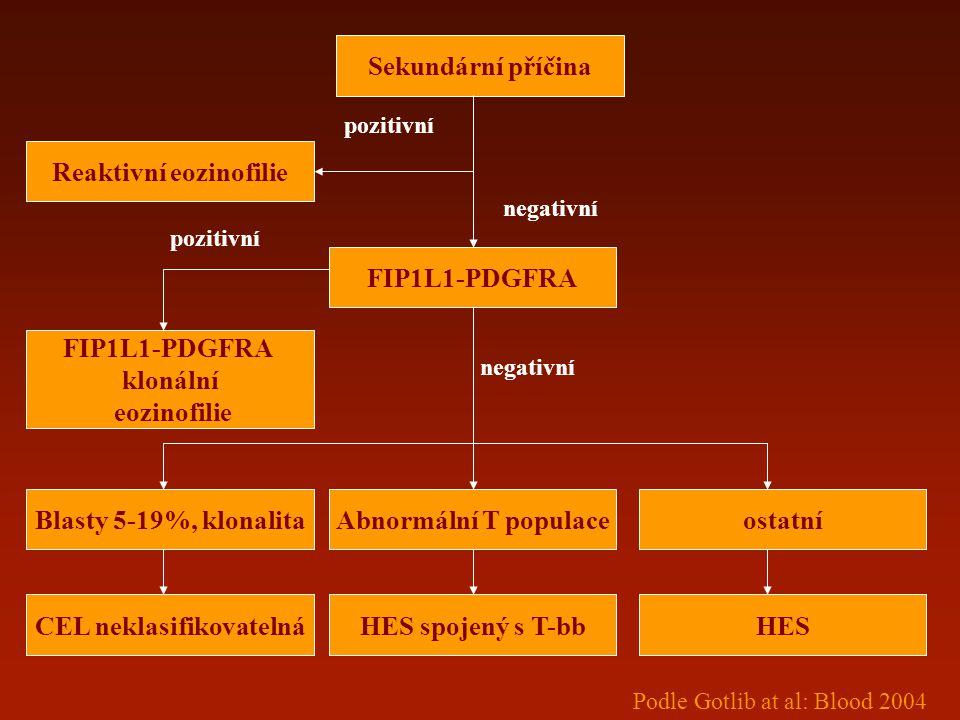 Sekundární příčina FIP1L1-PDGFRA Reaktivní eozinofilie Abnormální T populace FIP1L1-PDGFRA klonální eozinofilie ostatníBlasty 5-19%, klonalita CEL nek