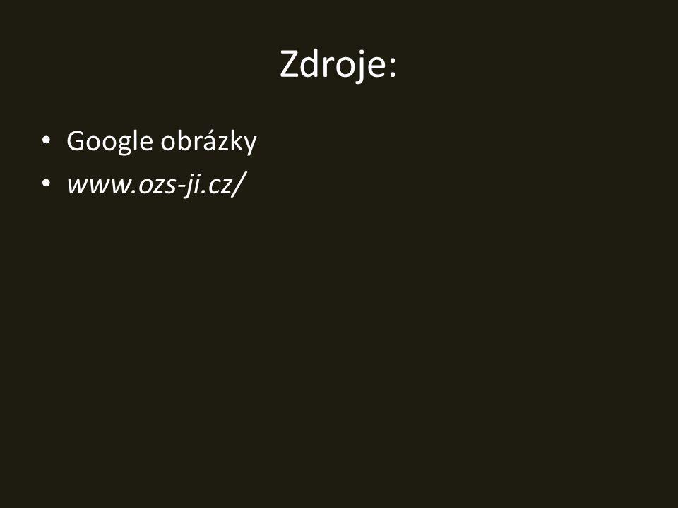 Zdroje: Google obrázky www.ozs-ji.cz/