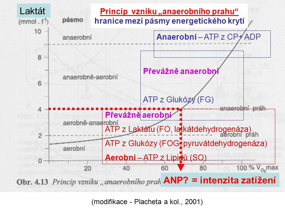 Anaerobní – ATP z CP+ ADP Převážně anaerobní ATP z Glukózy (FG) Převážně aerobní ATP z Laktátu (FO, latkátdehydrogenáza) ATP z Glukózy (FOG, pyruvátde
