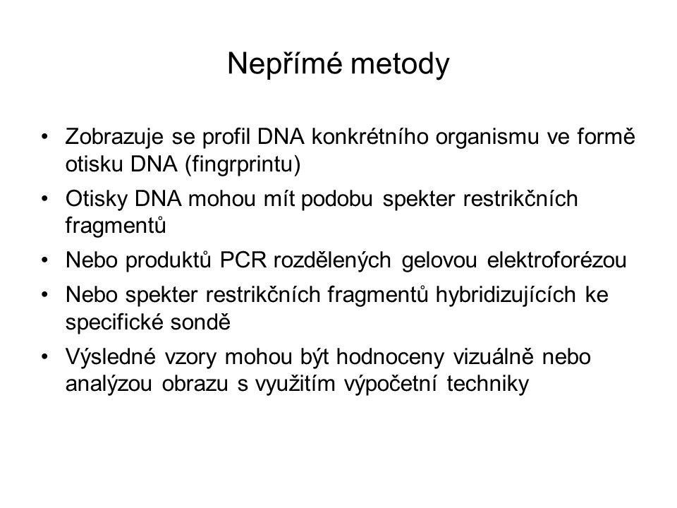 Nepřímé metody Zobrazuje se profil DNA konkrétního organismu ve formě otisku DNA (fingrprintu) Otisky DNA mohou mít podobu spekter restrikčních fragmentů Nebo produktů PCR rozdělených gelovou elektroforézou Nebo spekter restrikčních fragmentů hybridizujících ke specifické sondě Výsledné vzory mohou být hodnoceny vizuálně nebo analýzou obrazu s využitím výpočetní techniky
