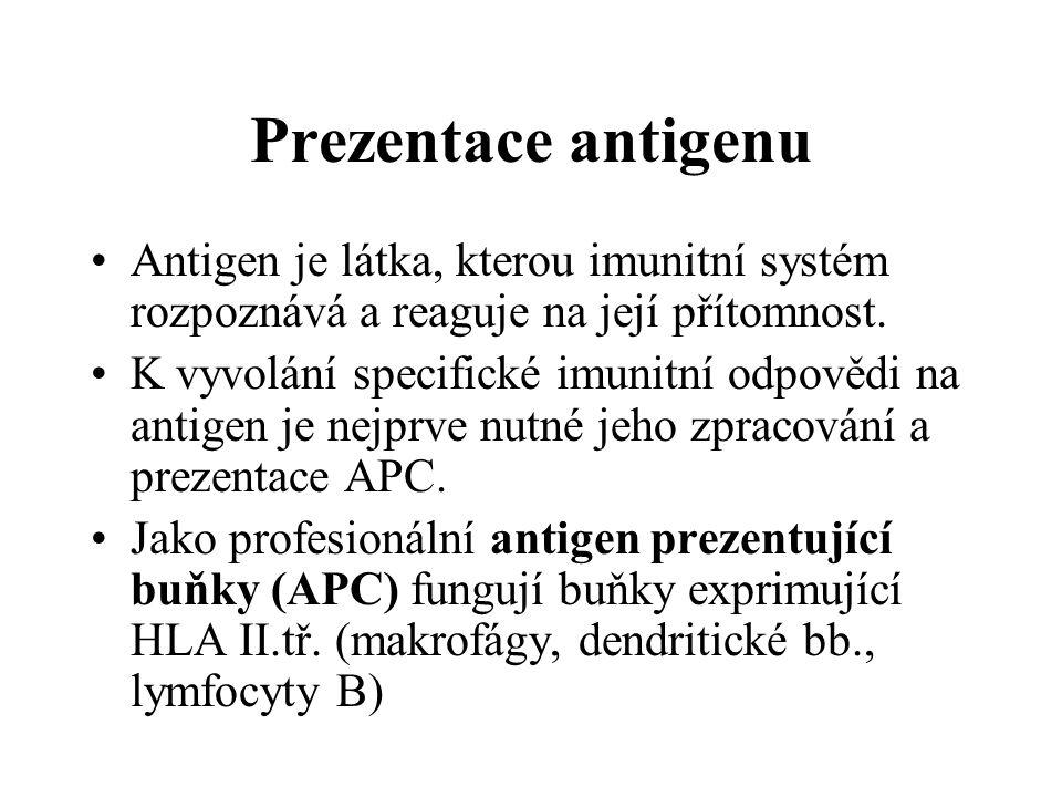 Prezentace antigenu Antigen je látka, kterou imunitní systém rozpoznává a reaguje na její přítomnost. K vyvolání specifické imunitní odpovědi na antig