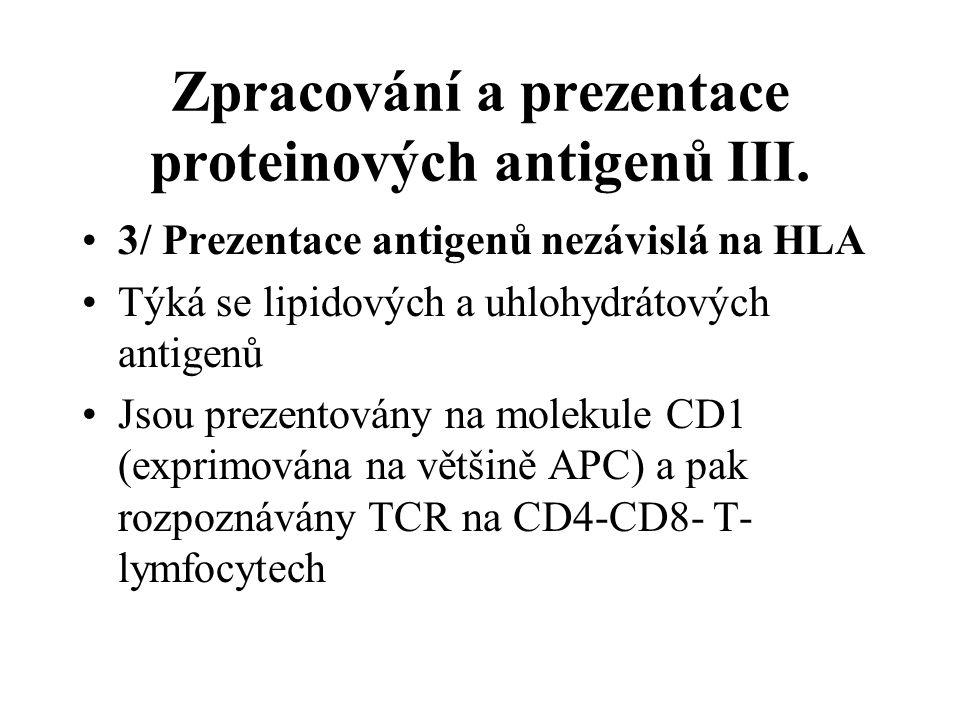 Zpracování a prezentace proteinových antigenů III. 3/ Prezentace antigenů nezávislá na HLA Týká se lipidových a uhlohydrátových antigenů Jsou prezento