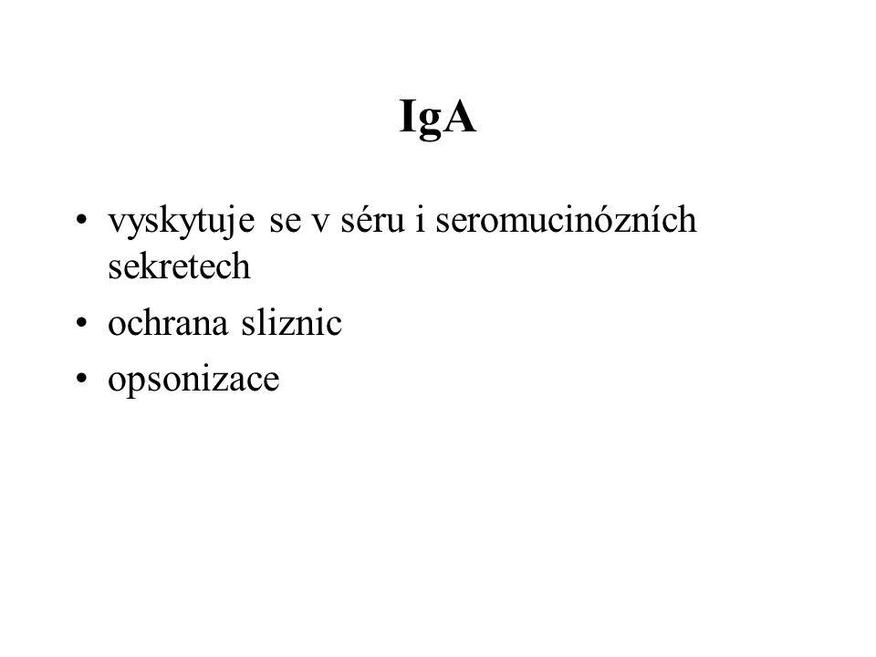 IgA vyskytuje se v séru i seromucinózních sekretech ochrana sliznic opsonizace