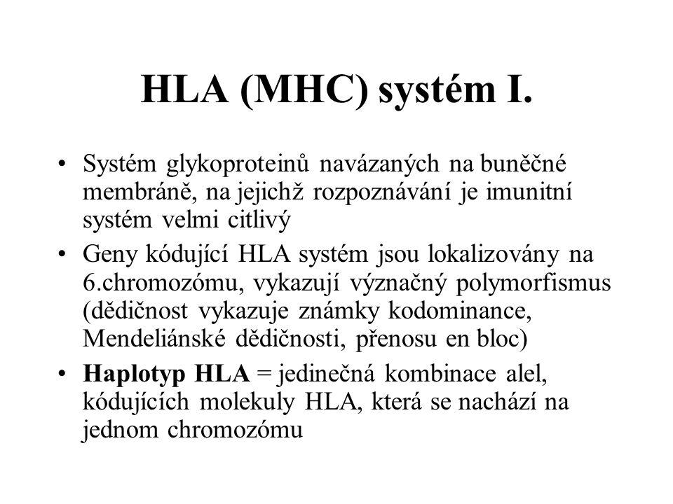 HLA (MHC) systém I. Systém glykoproteinů navázaných na buněčné membráně, na jejichž rozpoznávání je imunitní systém velmi citlivý Geny kódující HLA sy
