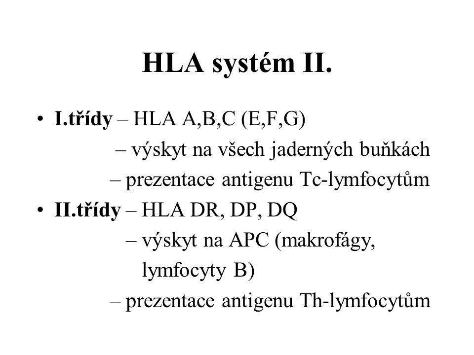 HLA systém II. I.třídy – HLA A,B,C (E,F,G) – výskyt na všech jaderných buňkách – prezentace antigenu Tc-lymfocytům II.třídy – HLA DR, DP, DQ – výskyt