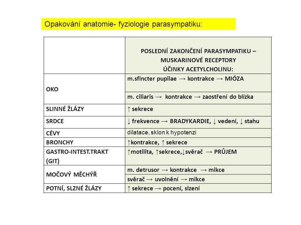POSLEDNÍ ZAKONČENÍ PARASYMPATIKU – MUSKARINOVÉ RECEPTORY ÚČINKY ACETYLCHOLINU: OKO m.sfincter pupilae → kontrakce → MIÓZA m.