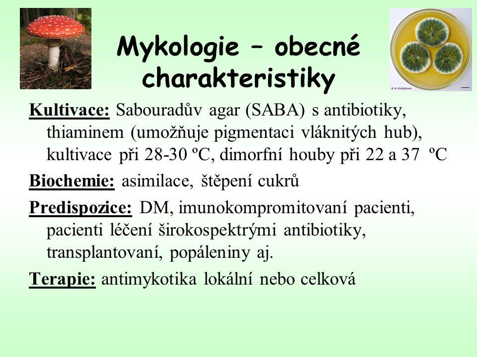 Mykologie – obecné charakteristiky Kultivace: Sabouradův agar (SABA) s antibiotiky, thiaminem (umožňuje pigmentaci vláknitých hub), kultivace při 28-30 ºC, dimorfní houby při 22 a 37 ºC Biochemie: asimilace, štěpení cukrů Predispozice: DM, imunokompromitovaní pacienti, pacienti léčení širokospektrými antibiotiky, transplantovaní, popáleniny aj.
