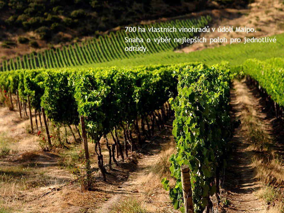 700 ha vlastních vinohradů v údolí Maipo. Snaha o výběr nejlepších poloh pro jednotlivé odrůdy.