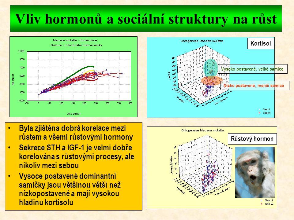 Růst makaků rhesus Tělesná výška je u opic základním integrálním růstovým parametrem Základní tělesné parametry oscilují u makaků v průběhu ontogeneze