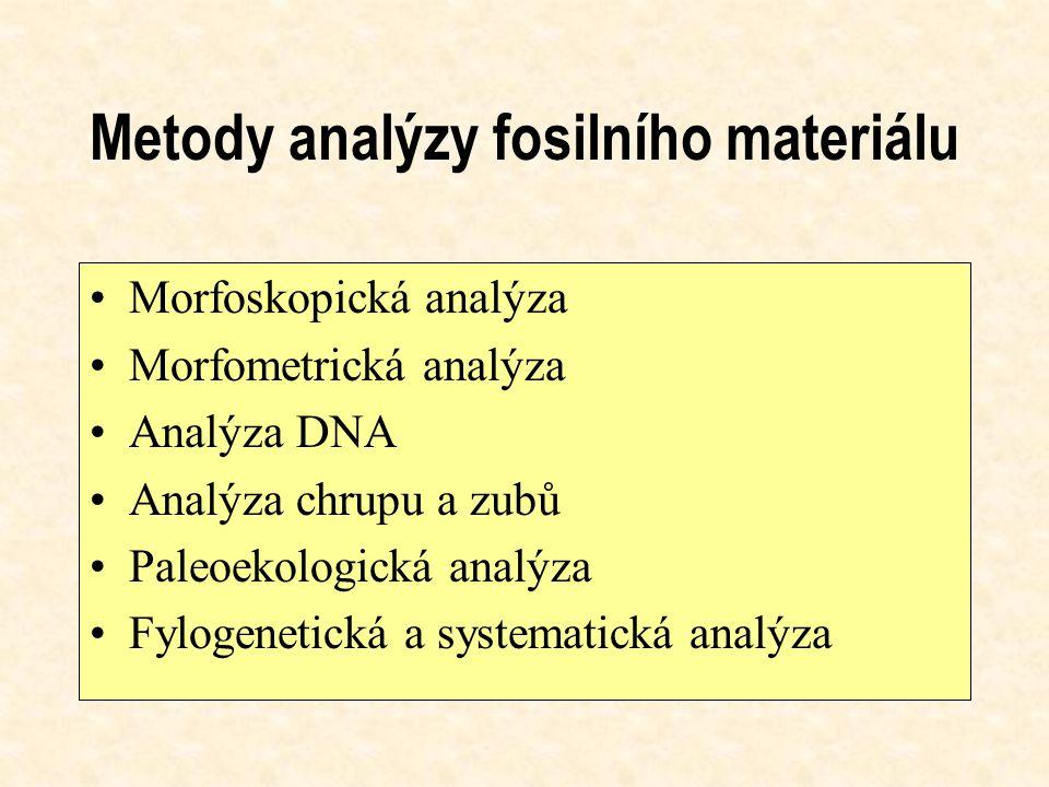 Metody analýzy fosilního materiálu Morfoskopická analýza Morfometrická analýza Analýza DNA Analýza chrupu a zubů Paleoekologická analýza Fylogenetická a systematická analýza