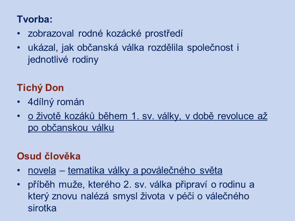 Michail Alexandrovič Šolochov Centrum pro virtuální a moderní metody a formy vzdělávání na Obchodní akademii T.