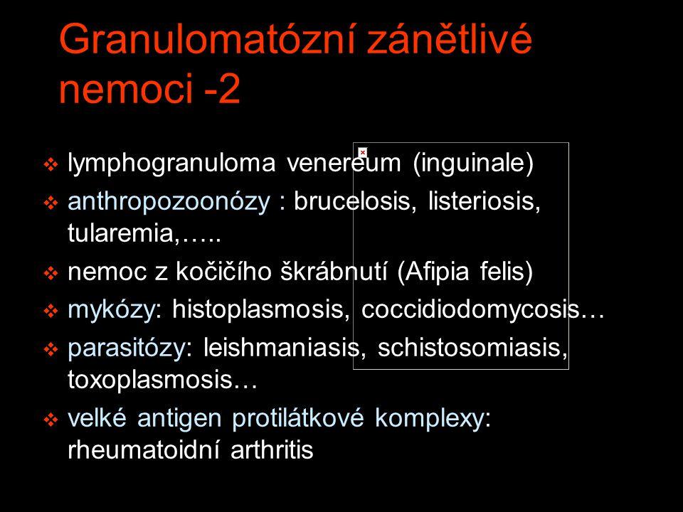 v lymphogranuloma venereum (inguinale) v anthropozoonózy : brucelosis, listeriosis, tularemia,….. v nemoc z kočičího škrábnutí (Afipia felis) v mykózy