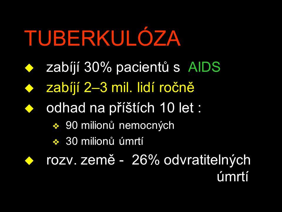 TUBERKULÓZA u zabíjí 30% pacientů s AIDS u zabíjí 2–3 mil. lidí ročně u odhad na příštích 10 let : v 90 milionů nemocných v 30 milionů úmrtí u rozv. z