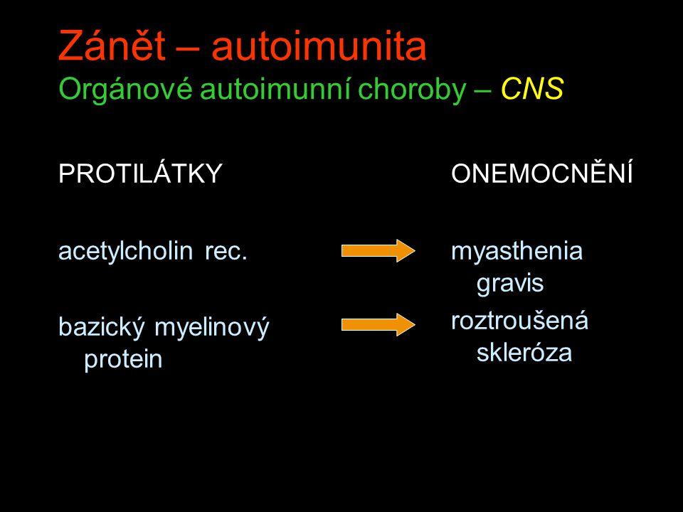 Zánět – autoimunita Orgánové autoimunní choroby – CNS PROTILÁTKY acetylcholin rec. bazický myelinový protein ONEMOCNĚNÍ myasthenia gravis roztroušená