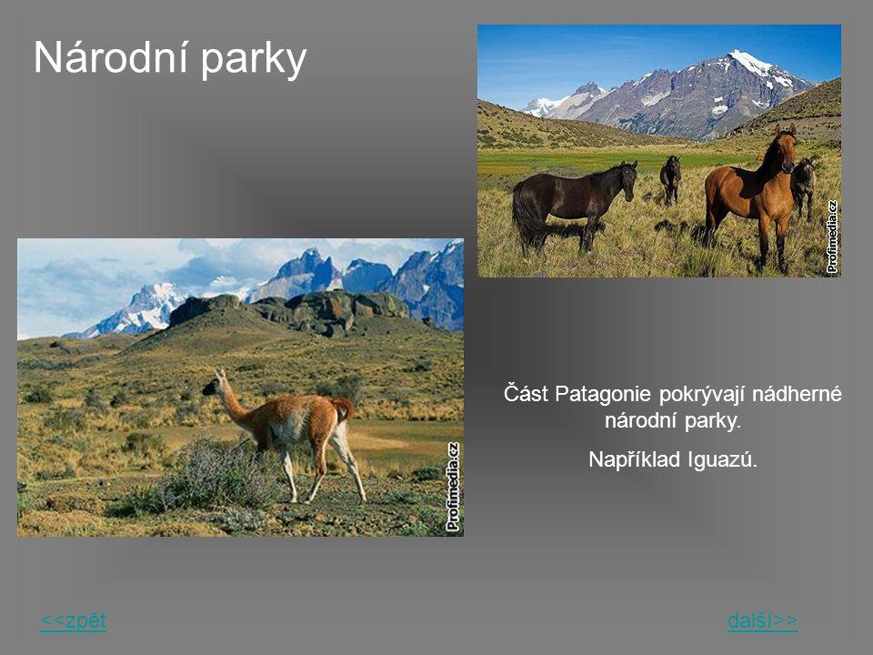 Národní parky Část Patagonie pokrývají nádherné národní parky. Například Iguazú. <<zpětdalší>>