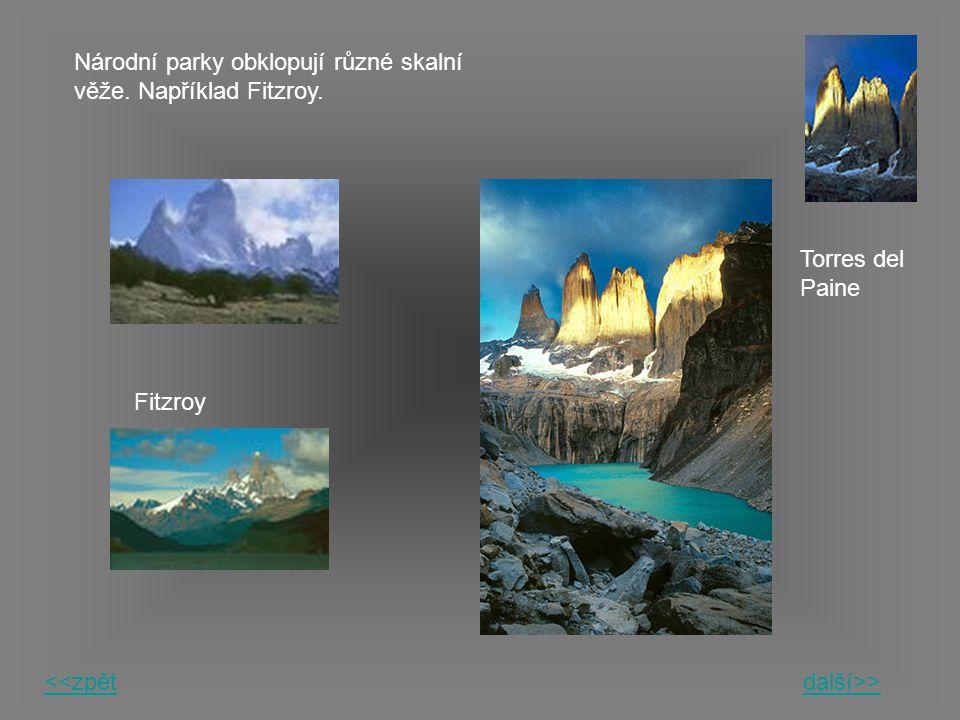 Národní parky obklopují různé skalní věže. Například Fitzroy. Fitzroy Torres del Paine <<zpětdalší>>