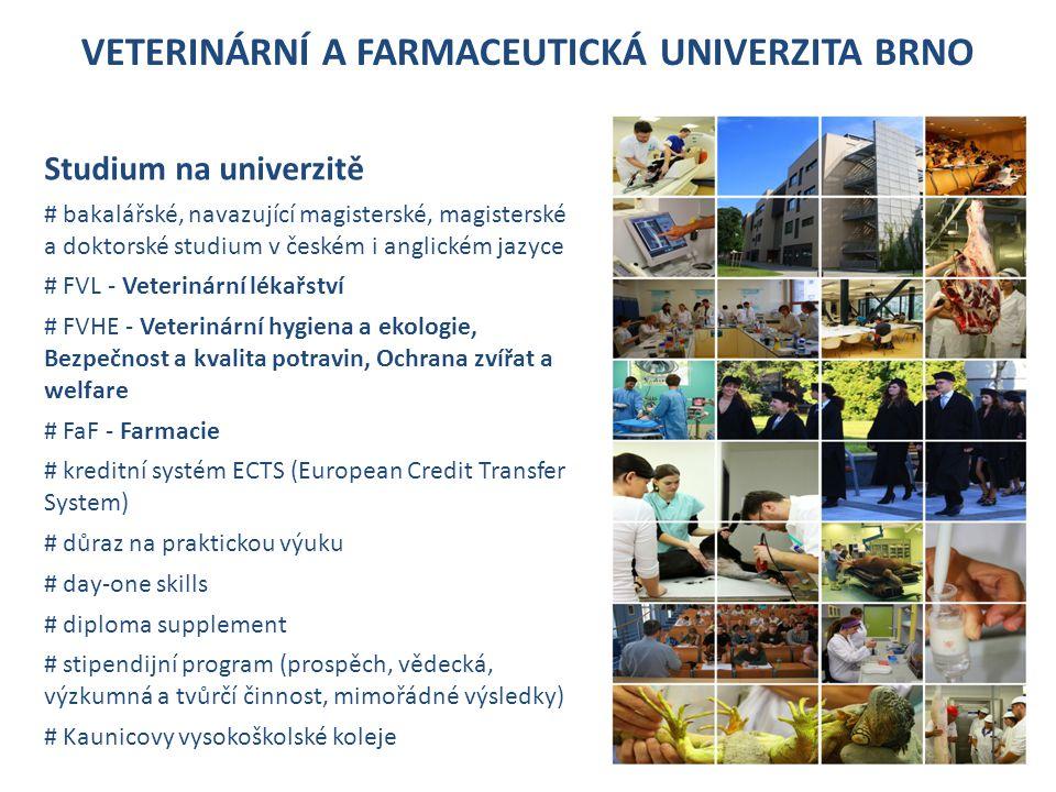 VETERINÁRNÍ A FARMACEUTICKÁ UNIVERZITA BRNO Studium na univerzitě # bakalářské, navazující magisterské, magisterské a doktorské studium v českém i anglickém jazyce # FVL - Veterinární lékařství # FVHE - Veterinární hygiena a ekologie, Bezpečnost a kvalita potravin, Ochrana zvířat a welfare # FaF - Farmacie # kreditní systém ECTS (European Credit Transfer System) # důraz na praktickou výuku # day-one skills # diploma supplement # stipendijní program (prospěch, vědecká, výzkumná a tvůrčí činnost, mimořádné výsledky) # Kaunicovy vysokoškolské koleje