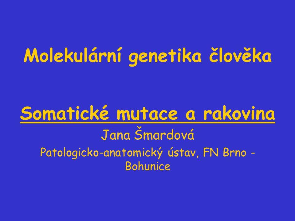 Molekulární genetika člověka Somatické mutace a rakovina Jana Šmardová Patologicko-anatomický ústav, FN Brno - Bohunice