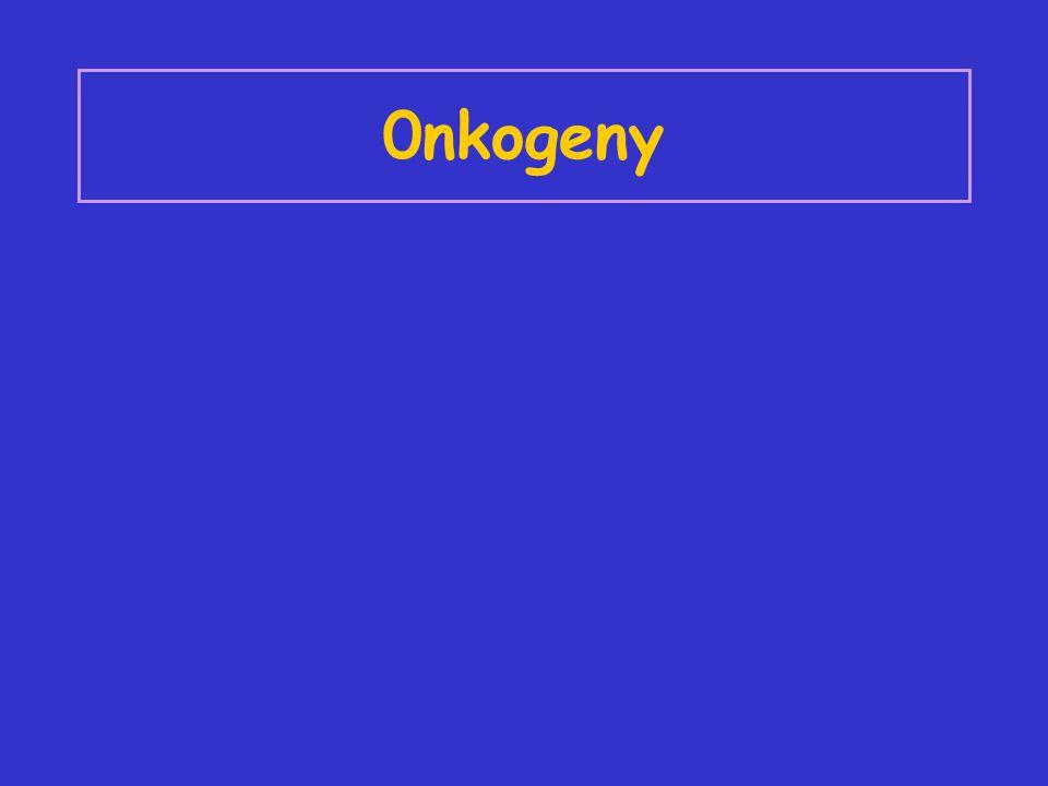 0nkogeny