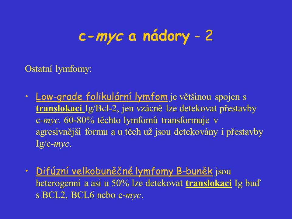 c-myc a nádory - 2 Ostatní lymfomy: Low-grade folikulární lymfom je většinou spojen s translokací Ig/Bcl-2, jen vzácně lze detekovat přestavby c-myc.