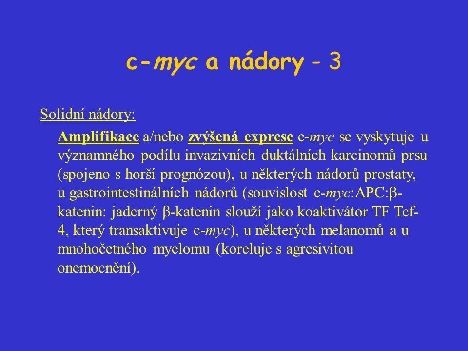 c-myc a nádory - 3 Solidní nádory: Amplifikace a/nebo zvýšená exprese c-myc se vyskytuje u významného podílu invazivních duktálních karcinomů prsu (spojeno s horší prognózou), u některých nádorů prostaty, u gastrointestinálních nádorů (souvislost c-myc:APC:  - katenin: jaderný  -katenin slouží jako koaktivátor TF Tcf- 4, který transaktivuje c-myc), u některých melanomů a u mnohočetného myelomu (koreluje s agresivitou onemocnění).