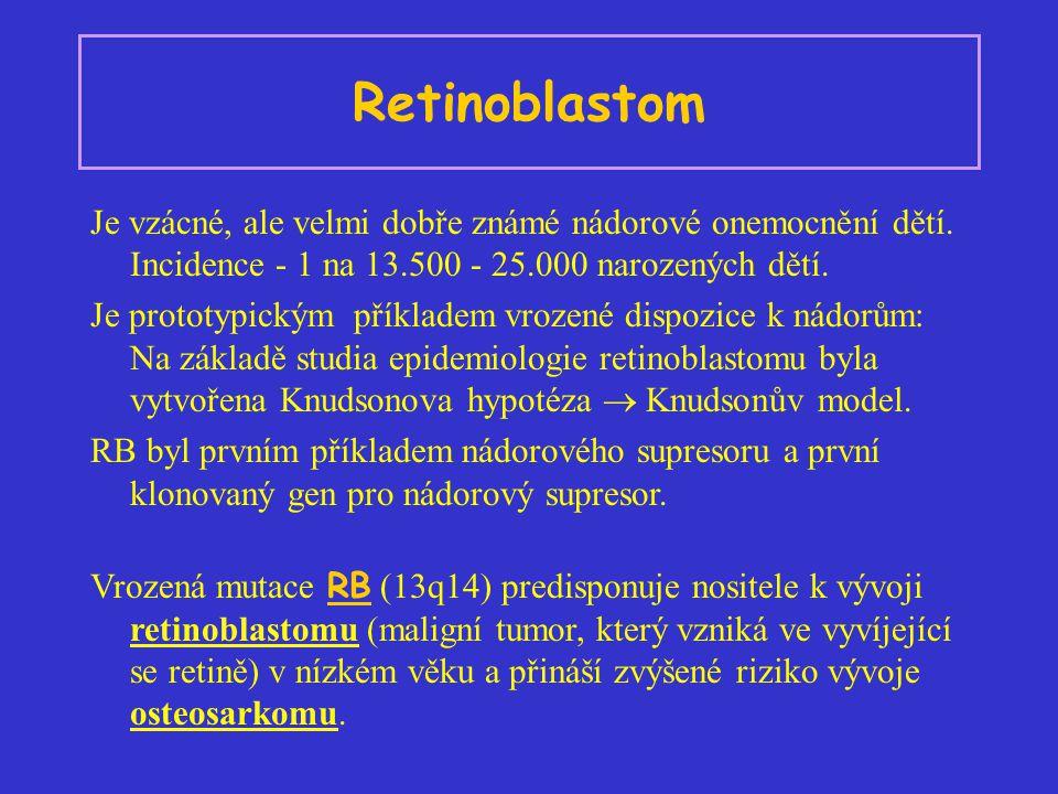 Retinoblastom Je vzácné, ale velmi dobře známé nádorové onemocnění dětí. Incidence - 1 na 13.500 - 25.000 narozených dětí. Je prototypickým příkladem