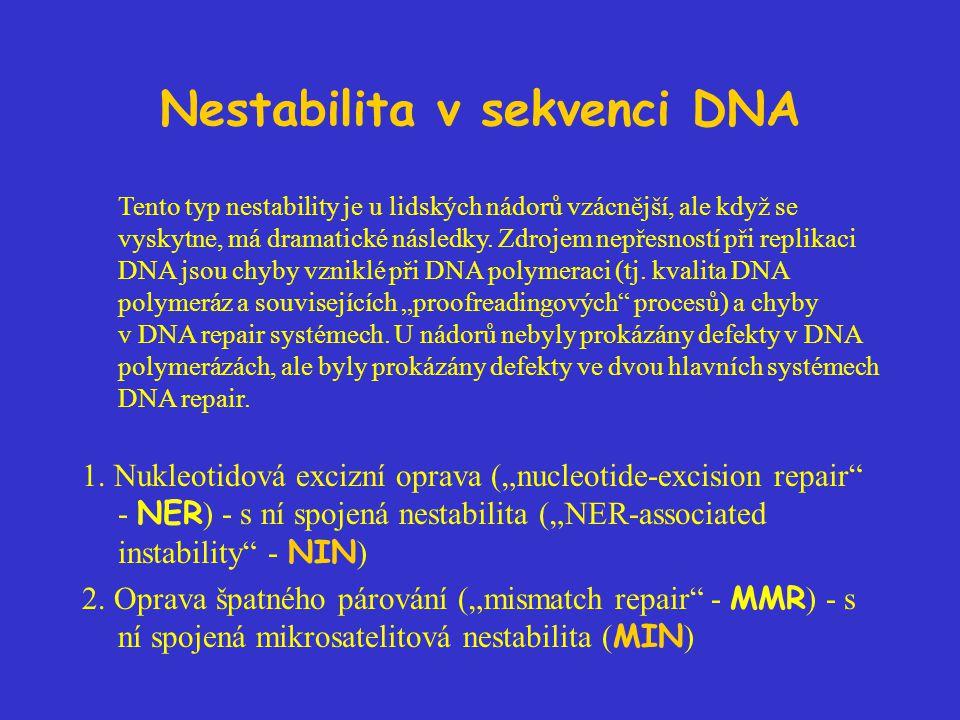 Nestabilita v sekvenci DNA Tento typ nestability je u lidských nádorů vzácnější, ale když se vyskytne, má dramatické následky. Zdrojem nepřesností při