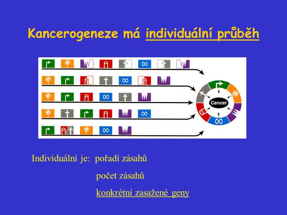 Kancerogeneze má individuální průběh Individuální je: pořadí zásahů počet zásahů konkrétní zasažené geny
