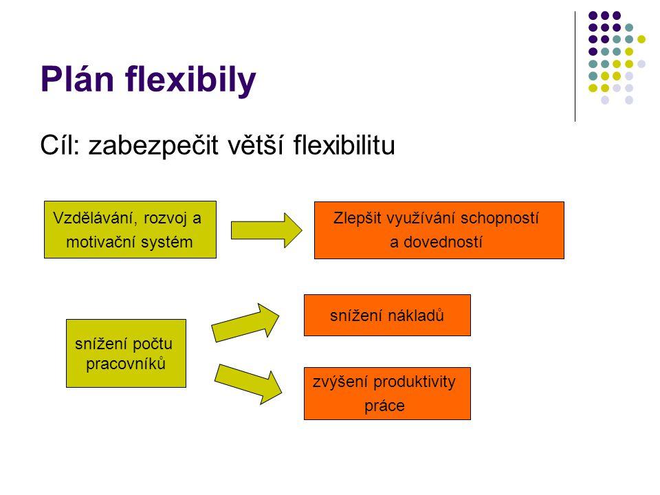 Plán flexibily Cíl: zabezpečit větší flexibilitu Vzdělávání, rozvoj a motivační systém Zlepšit využívání schopností a dovedností snížení počtu pracovníků snížení nákladů zvýšení produktivity práce