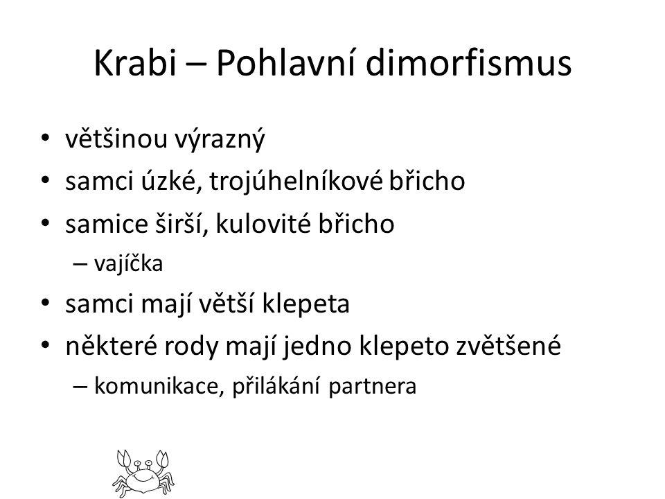 Krabi – Pohlavní dimorfismus většinou výrazný samci úzké, trojúhelníkové břicho samice širší, kulovité břicho – vajíčka samci mají větší klepeta někte