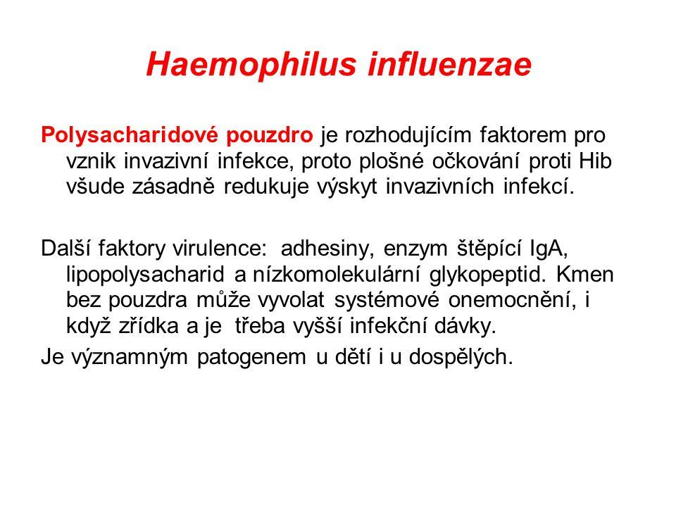 Haemophilus influenzae Polysacharidové pouzdro je rozhodujícím faktorem pro vznik invazivní infekce, proto plošné očkování proti Hib všude zásadně red