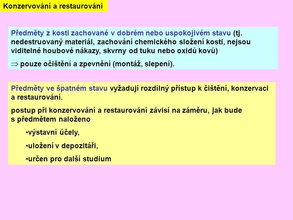 Předměty z kosti zachované v dobrém nebo uspokojivém stavu (tj.