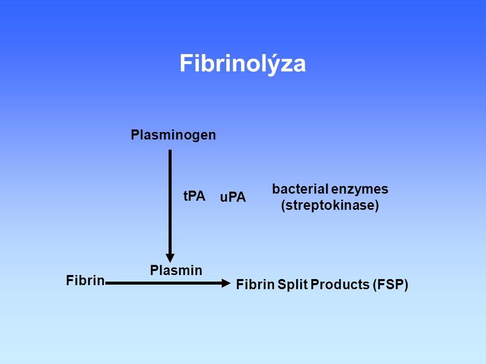 Fibrin Fibrin Split Products (FSP) Plasmin Plasminogen tPA Fibrinolýza uPA bacterial enzymes (streptokinase)